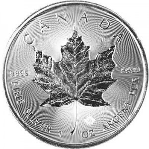 Maple Leaf 1oz d'Argent - 2019 Incuse