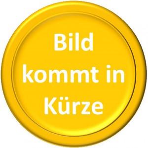 100 Couronnes autrichienne 30,48g d'or fin - Deuxième Choix